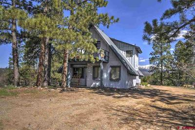 Durango Single Family Home For Sale: 179 Brown's Lake Road Road