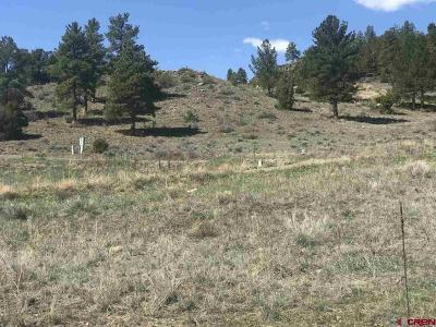 South Fork Residential Lots & Land For Sale: 550 Rio Grande Club Trail