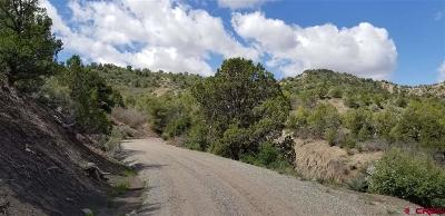 Durango Residential Lots & Land For Sale: 2930 Rancho Durango Road