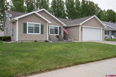 Montrose Single Family Home UC/Contingent/Call LB: 1023 Deer Trail Road