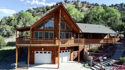 Paonia CO Single Family Home For Sale: $315,000