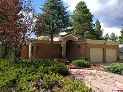 Pagosa Springs Single Family Home For Sale: 329 Handicap Avenue
