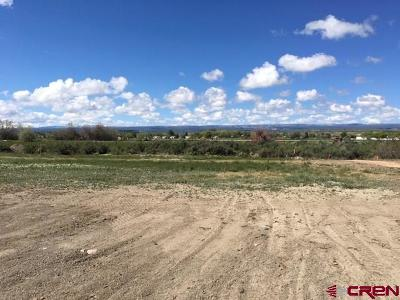 Montrose Residential Lots & Land For Sale: 1207 Walden Drive