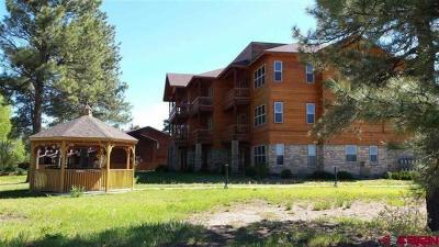 Pagosa Springs Condo/Townhouse For Sale: 109 Ace Court #204