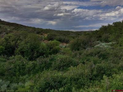Montrose Residential Lots & Land For Sale: Hwy 90