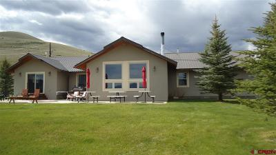 Gunnison Single Family Home For Sale: 45301 County Road 18 Vv