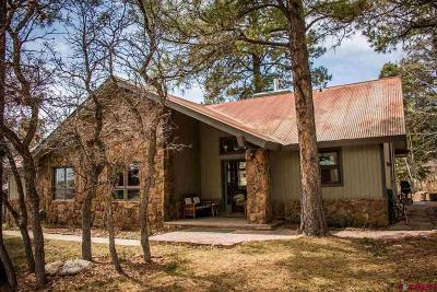 Pagosa Springs Single Family Home For Sale: 226 Pines Club Place