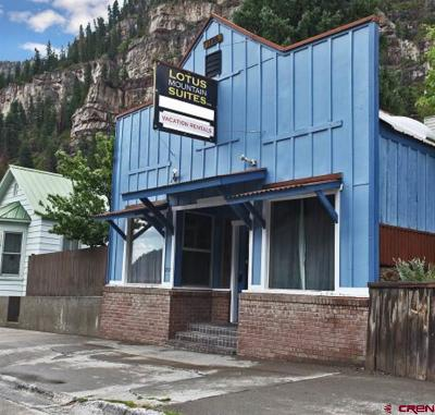 Ouray Single Family Home For Sale: 837 Main Street