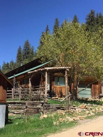 La Plata County Single Family Home For Sale: 11719 Road 105