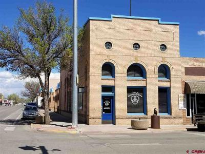 Commercial For Sale: 500 State Avenue