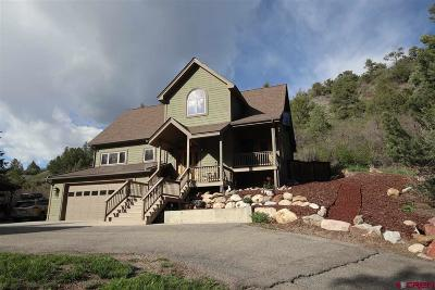 Durango Single Family Home For Sale: 237 Ute Pass West Road
