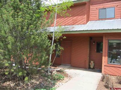La Plata County Condo/Townhouse UC/Contingent/Call LB: 4088 Cr 203 #6
