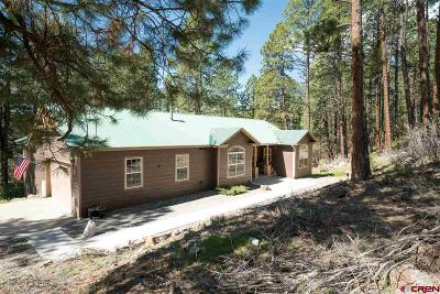 La Plata County Single Family Home For Sale: 251 Lake View Drive
