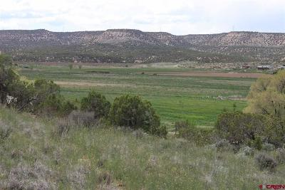 Montrose Residential Lots & Land For Sale: 15332 Shavano Valley Road