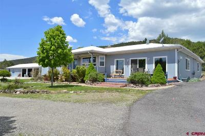 Paonia CO Single Family Home For Sale: $345,000
