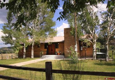 Pagosa Springs Single Family Home For Sale: 8329 Highway 151