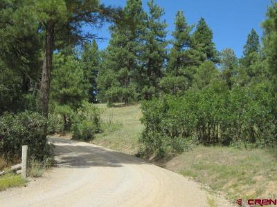 Durango CO Residential Lots & Land For Sale: $999,900