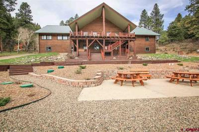 Pagosa Springs Single Family Home For Sale: 1099 Blue Creek Rd Road