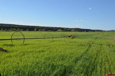 Hesperus Residential Lots & Land For Sale: 1705 Hwy. 140