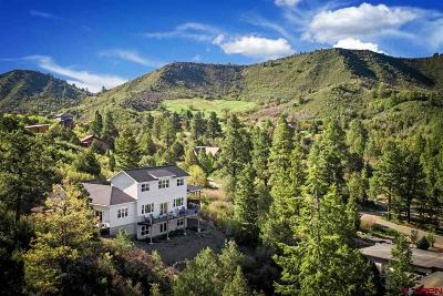 Durango Single Family Home For Sale: 215 Legends Drive