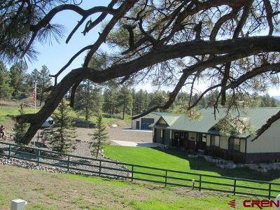 Single Family Home Back on Market: 375 Dandelion Drive
