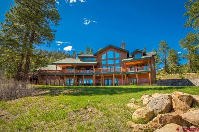 La Plata County Single Family Home For Sale: 780 Trew Creek Road