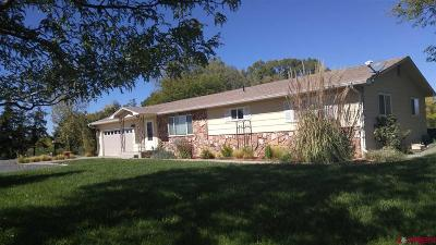 Delta County Single Family Home For Sale: 14501 F Road