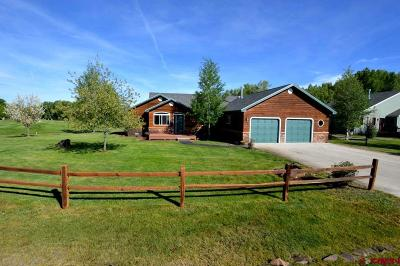 Gunnison CO Single Family Home For Sale: $525,000
