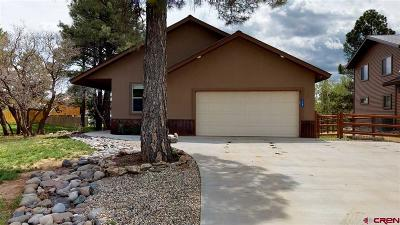 Pagosa Springs Single Family Home For Sale: 119 Lakewood Street