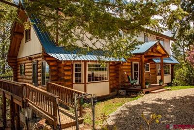 Pagosa Springs Single Family Home For Sale: 56 Fox Place