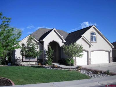 Montrose Single Family Home For Sale: 3500 Chestnut Drive