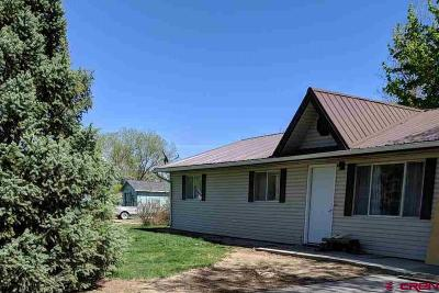 Montrose Single Family Home NEW: 13365 L Road