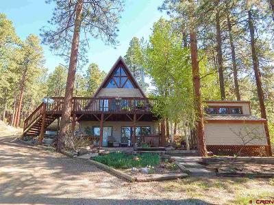 La Plata County Single Family Home For Sale: 345 E Valley View Drive