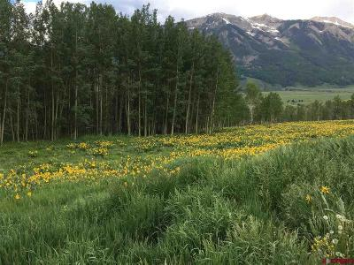 Crested Butte CO Residential Lots & Land For Sale: $465,000
