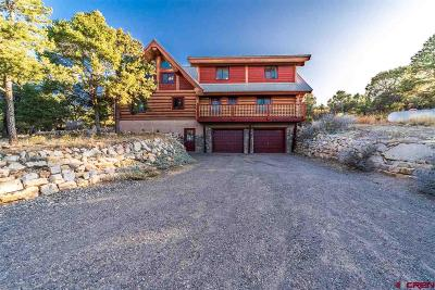 Ouray County Single Family Home For Sale: 270 E Pinon Road