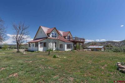 La Plata County Single Family Home UC/Contingent/Call LB: 966 Cr 213