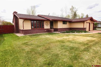 Alamosa Single Family Home For Sale: 711 Diamond