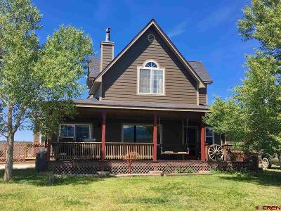 Pagosa Springs Single Family Home For Sale: 421 Stallion