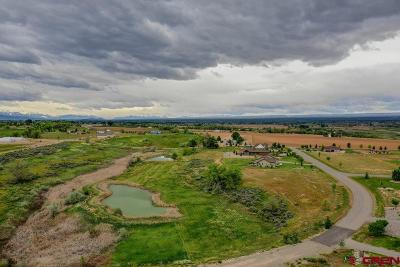 Montrose Residential Lots & Land For Sale: 6020 Road