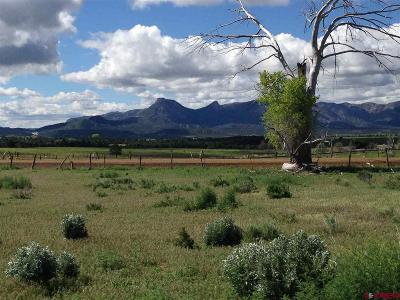 Mancos Residential Lots & Land For Sale: 13538 Road 32.4