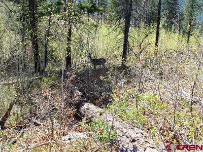 Bayfield CO Residential Lots & Land For Sale: $70,000