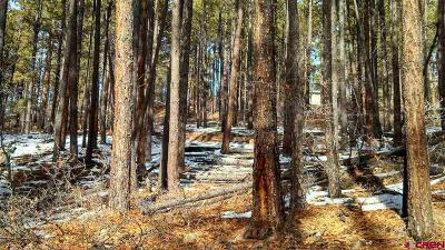 Bayfield CO Residential Lots & Land For Sale: $40,000