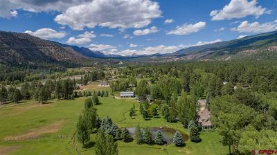 La Plata County Single Family Home UC/Contingent/Call LB: 10907 Cr 250