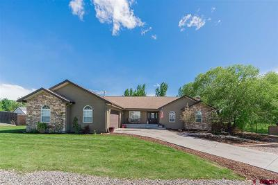 Montrose Single Family Home NEW: 3401 Valley Way