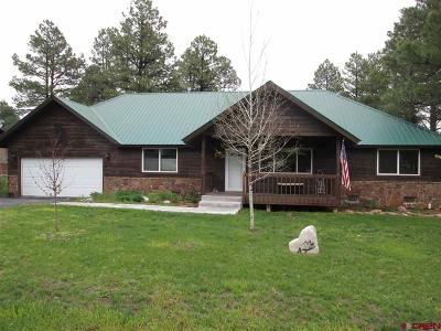 Pagosa Springs Single Family Home For Sale: 161 Inspiration Drive