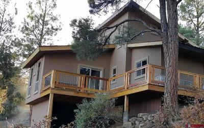 Pagosa Springs Single Family Home For Sale: 1030 Shenandoah Drive