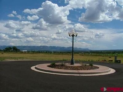 Dolores Residential Lots & Land For Sale: Road 24.8