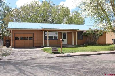 Alamosa Single Family Home NEW: 703 Graf Drive