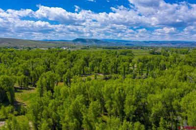 Gunnison Residential Lots & Land For Sale: 451 Kokanee Court