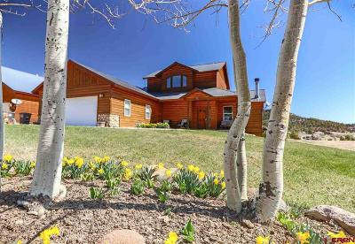 Pagosa Springs Single Family Home For Sale: 211 Hidden Drive
